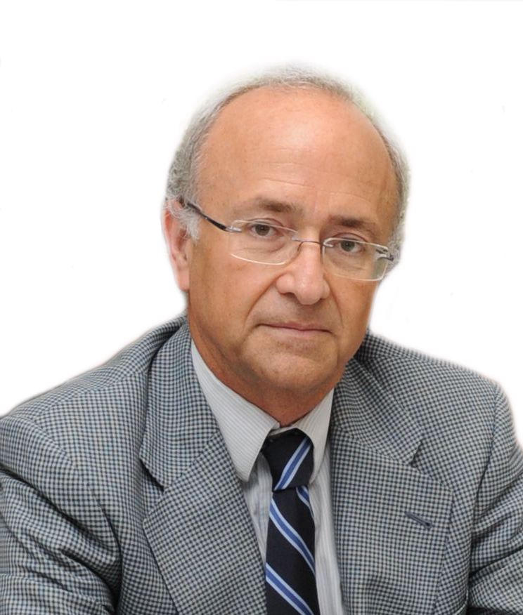 D. Vicente Magro Servet